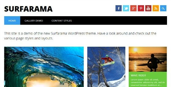 Surfarama » WP Dev Shed