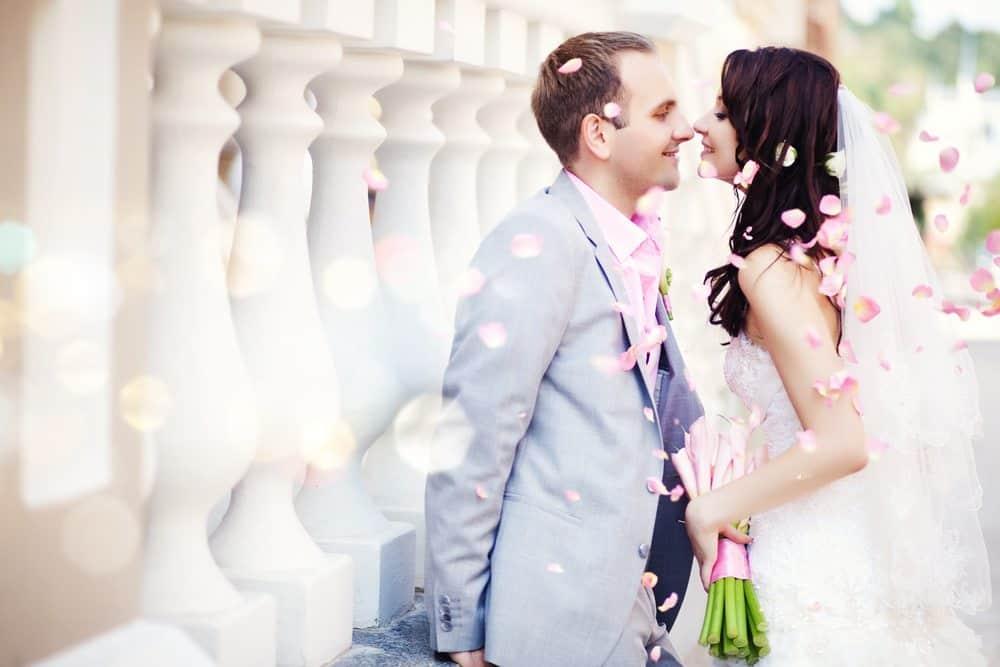 wpdevshed wedding