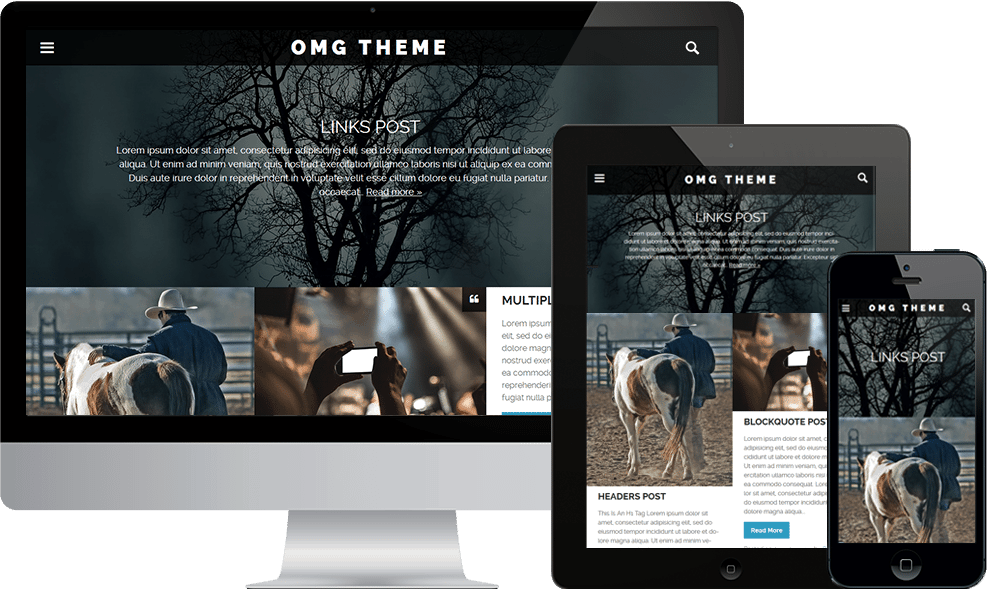 Scrn-responsive-omgtheme1