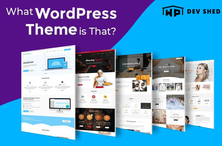 What WordPress Theme is That?