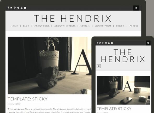 hendrix 590x433 1