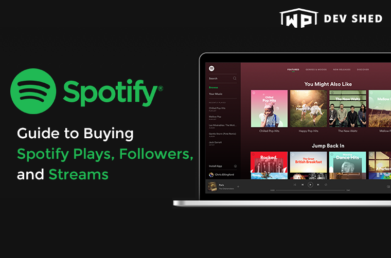 Guide to Buying Spotify Plays, Followers, and Streams: 10 Best Sites for 2021