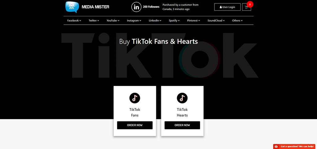 Media Mister-Tiktok
