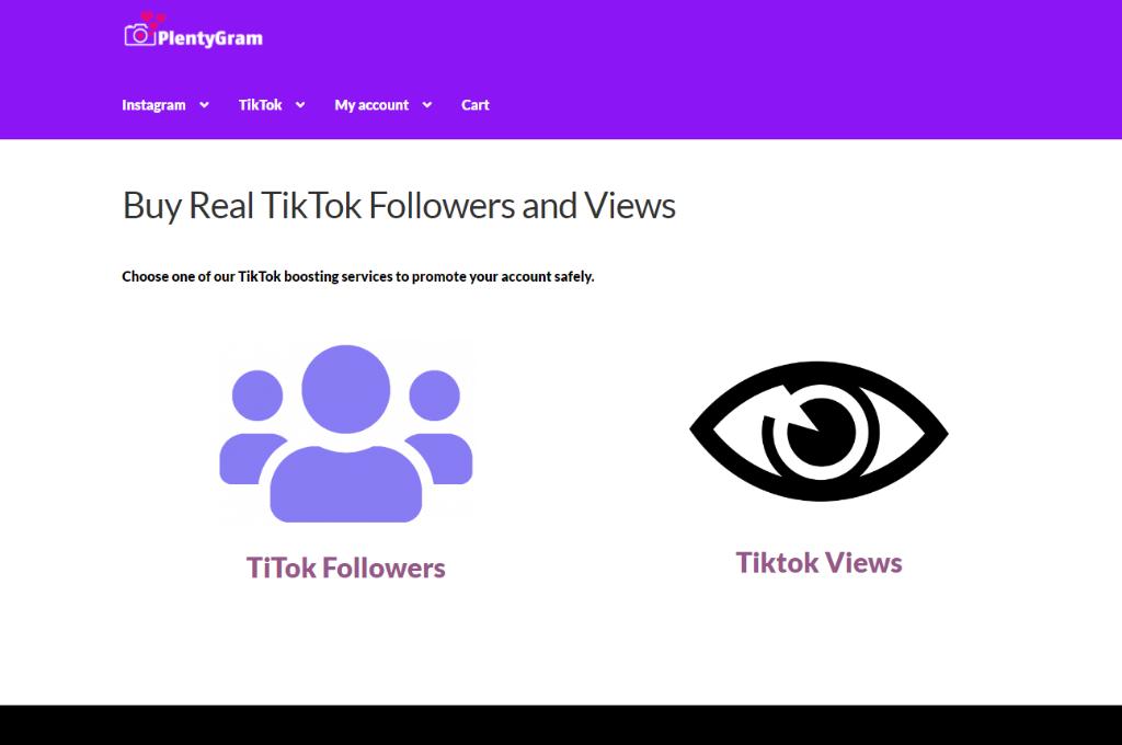 PlentyGram TikTok Followers and Views