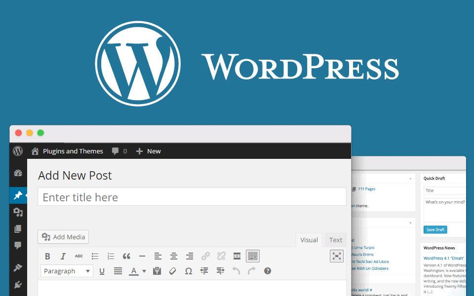 WordPress Content post